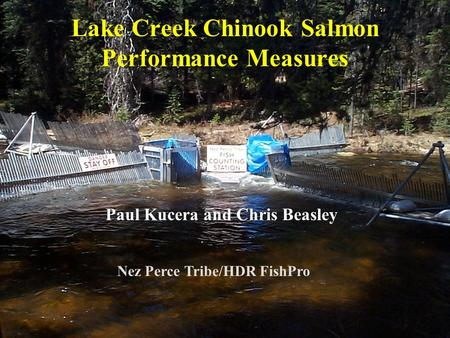 Lake Creek Chinook Salmon Performance Measures Paul Kucera and Chris Beasley Nez Perce Tribe/HDR FishPro.