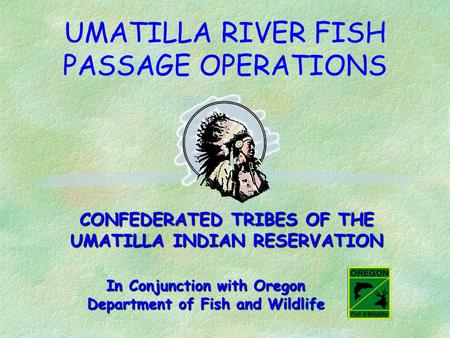 UMATILLA RIVER FISH PASSAGE OPERATIONS CONFEDERATED TRIBES OF THE UMATILLA INDIAN RESERVATION In Conjunction with Oregon Department of Fish and Wildlife.