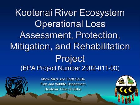 Kootenai River Ecosystem Operational Loss Assessment, Protection, Mitigation, and Rehabilitation Project (BPA Project Number 2002-011-00) Norm Merz and.