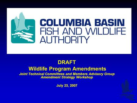 DRAFT Wildlife Program Amendments Joint Technical Committees and Members Advisory Group Amendment Strategy Workshop July 23, 2007.