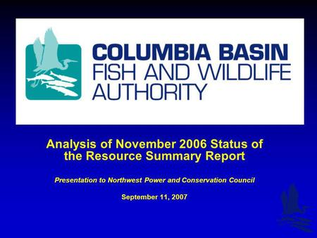 Analysis of November 2006 Status of the Resource Summary Report Presentation to Northwest Power and Conservation Council September 11, 2007.