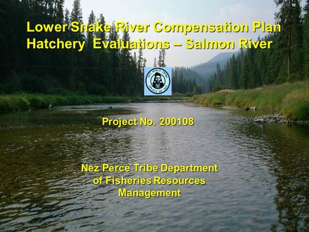 Lower Snake River Compensation Plan Hatchery Evaluations – Salmon River Project No. 200108 Nez Perce Tribe Department of Fisheries Resources Management.