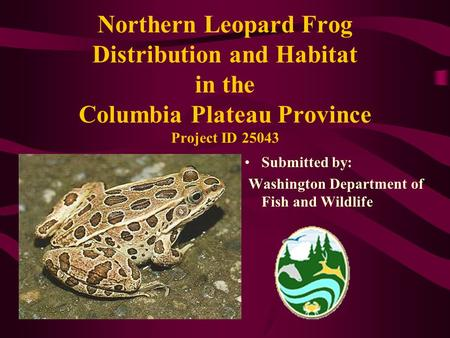 Northern Leopard Frog Distribution and Habitat in the Columbia Plateau Province Project ID 25043 Submitted by: Washington Department of Fish and Wildlife.