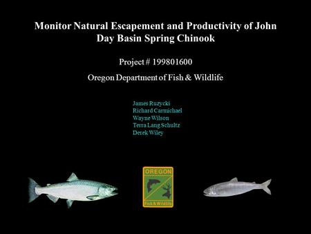 Monitor Natural Escapement and Productivity of John Day Basin Spring Chinook Project # 199801600 Oregon Department of Fish & Wildlife James Ruzycki Richard.
