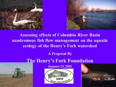 Assessing effects of Columbia River Basin anadromous fish flow management on the aquatic ecology of the Henrys Fork watershed A Proposal By The Henrys.