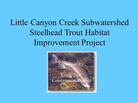 Little Canyon Creek Subwatershed Steelhead Trout Habitat Improvement Project Sponsored by: Lewis Soil Conservation District.