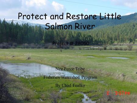 Protect and Restore Little Salmon River Project # 28050 Nez Perce Tribe Fisheries/Watershed Program By Chad Fealko.