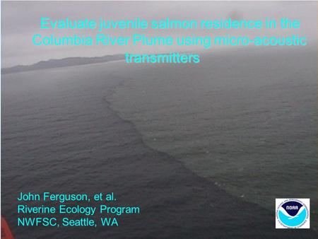 Evaluate juvenile salmon residence in the Columbia River Plume using micro-acoustic transmitters John Ferguson, et al. Riverine Ecology Program NWFSC,