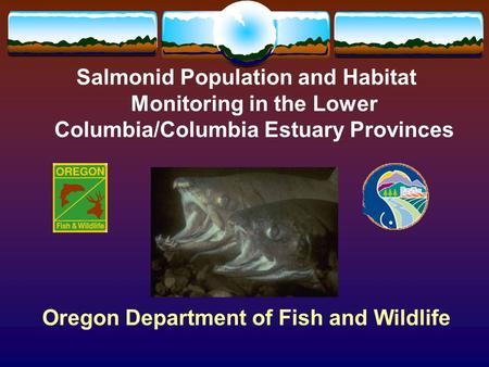Salmonid Population and Habitat Monitoring in the Lower Columbia/Columbia Estuary Provinces Oregon Department of Fish and Wildlife.