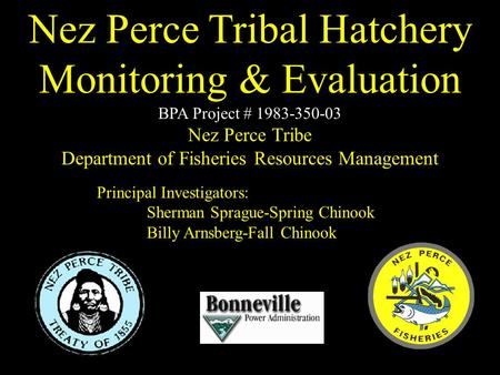Principal Investigators: Sherman Sprague-Spring Chinook Billy Arnsberg-Fall Chinook Nez Perce Tribal Hatchery Monitoring & Evaluation BPA Project # 1983-350-03.
