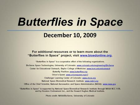 Butterflies in Space December 10, 2009 For additional resources or to learn more about the Butterflies in Space project, visit www.bioedonline.org.www.bioedonline.org.