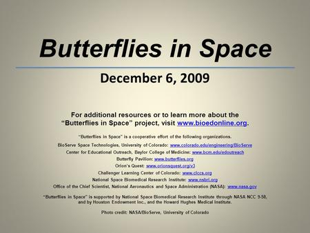 Butterflies in Space December 6, 2009 For additional resources or to learn more about the Butterflies in Space project, visit www.bioedonline.org.www.bioedonline.org.