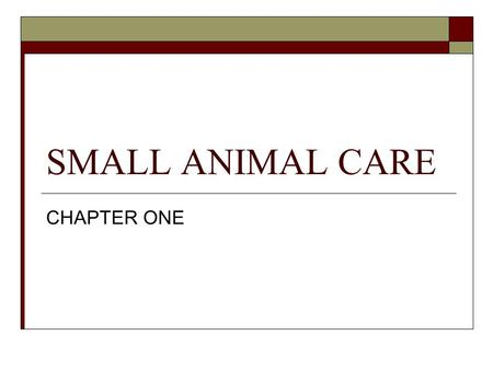 SMALL ANIMAL CARE CHAPTER ONE. INVERTEBRATES – 420 million years VERTEBRATES - 370 million years DINOSAURS – 180 million years SMALL ANIMAL – 70 to 40.