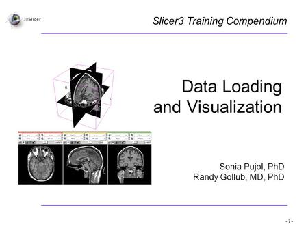 Pujol S, Gollub R -1- National Alliance for Medical Image Computing Data Loading and Visualization Sonia Pujol, PhD Randy Gollub, MD, PhD Slicer3 Training.