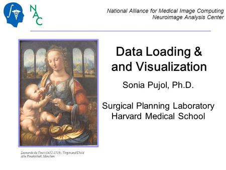 Data Loading & and Visualization Sonia Pujol, Ph.D. Surgical Planning Laboratory Harvard Medical School National Alliance for Medical Image Computing Neuroimage.