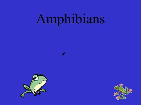 Amphibians AMPHIBIAN=GREEK FOR AMPHIBIOS WHICH MEANS DOUBLE LIFE ECTOTHERMIC VERTEBRATES HIBERNATE OR ESTIVATE DEPENDING ON CLIMATE.