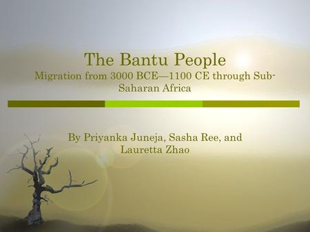 The Bantu People Migration from 3000 BCE1100 CE through Sub- Saharan Africa By Priyanka Juneja, Sasha Ree, and Lauretta Zhao.