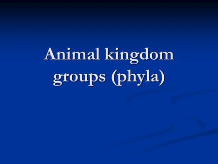 Animal kingdom groups (phyla). What is an animal? Heterotroph (consumer, not decomposer) Heterotroph (consumer, not decomposer) Multicellular Multicellular.