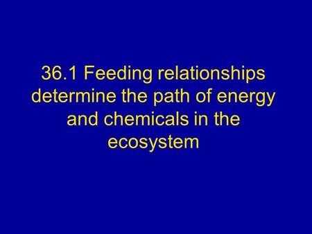 36.1 Feeding relationships determine the path of energy <strong>and</strong> chemicals in the <strong>ecosystem</strong>.