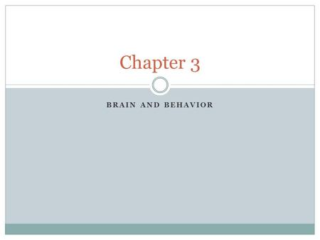 BRAIN AND BEHAVIOR Chapter 3. Key Questions How do nerve cells operate and communicate? What are the functions of major parts of the nervous systems?