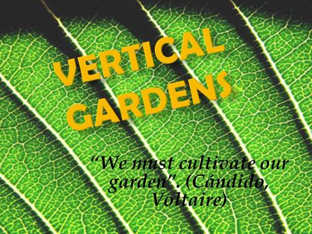 We must cultivate our garden. (Cándido, Voltaire).