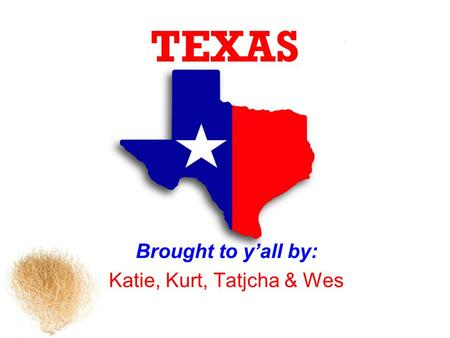 TEXAS Brought to yall by: Katie, Kurt, Tatjcha & Wes.