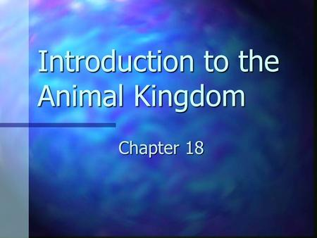Introduction to the Animal Kingdom Chapter 18. What Is an Animal? Eukaryotic Eukaryotic Multicellular Multicellular Heterotrophs Heterotrophs No cell.