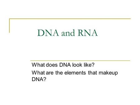 DNA and RNA What does DNA look like? What are the elements that makeup DNA?