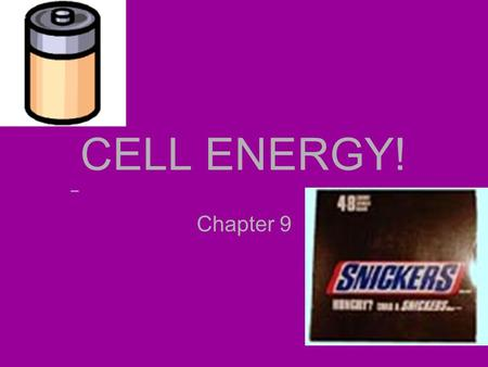 CELL ENERGY! Chapter 9. ENERGY - A hot item! All cells need energy to function. They must: – Produce energy from their environments –Store energy for.