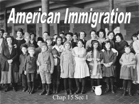 Stages of Immigration Immigration Laws First of all, you need to have read the book. If you dont you are toast.