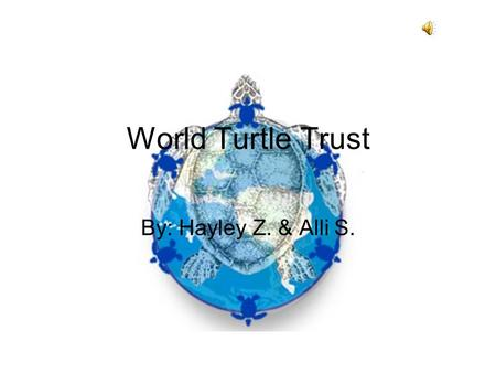 World Turtle Trust By: Hayley Z. & Alli S. Yes! Destruction of coral reefs Loss of nesting beaches due to us Chemicals and garbage are causing pollution.
