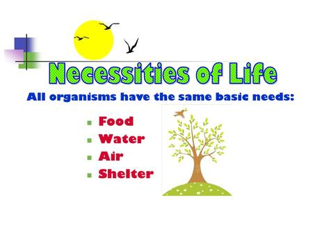 All organisms have the same basic needs: Food Water Air Shelter.