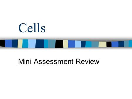 Mini Assessment Review