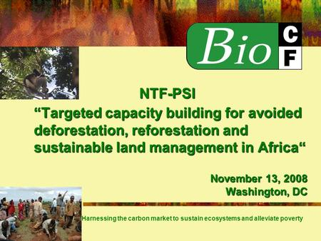 Targeted capacity building for avoided deforestation, reforestation and sustainable land management in Africa Harnessing the carbon market to sustain ecosystems.