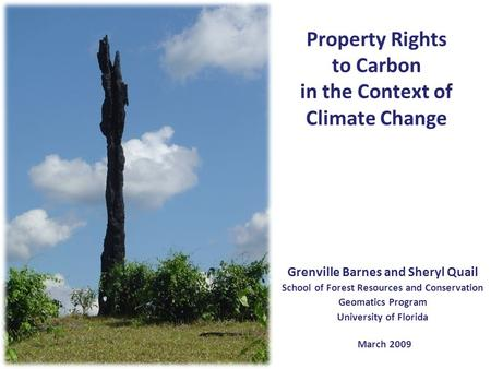 Property Rights to Carbon in the Context of Climate Change Grenville Barnes and Sheryl Quail School of Forest Resources and Conservation Geomatics Program.