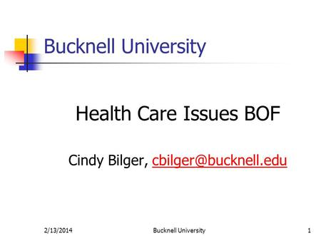 2/13/2014Bucknell University1 Health Care Issues BOF Cindy Bilger,