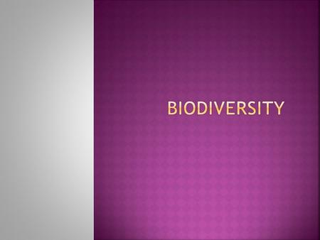 Section 1 Biodiversity – short for biological diversity Refers to the number of different species in an area A lot of biodiversity means a lot of ecosystem.