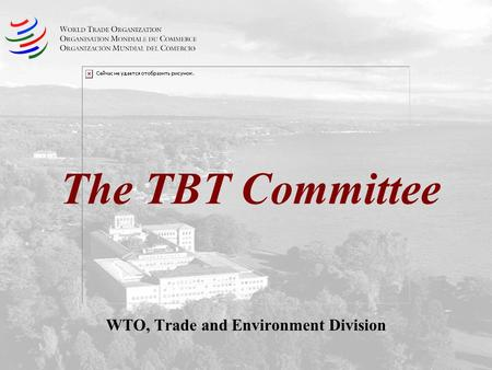 The TBT Committee WTO, Trade and Environment Division.