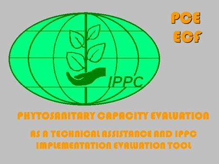 A Free sample background from www.powerpointbackgrounds.com Slide 1 PHYTOSANITARY CAPACITY EVALUATION AS A TECHNICAL ASSISTANCE AND IPPC IMPLEMENTATION.