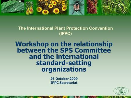 The International Plant Protection Convention (IPPC) Workshop on the relationship between the SPS Committee and the international standard-setting organizations.