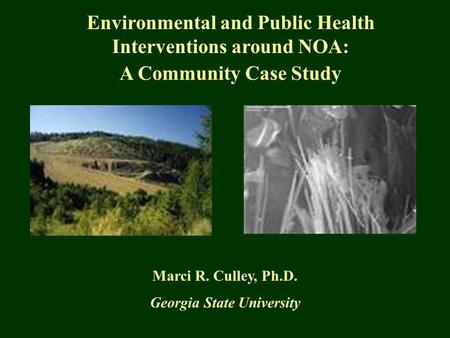 Environmental and Public Health Interventions around NOA: A Community Case Study Marci R. Culley, Ph.D. Georgia State University.