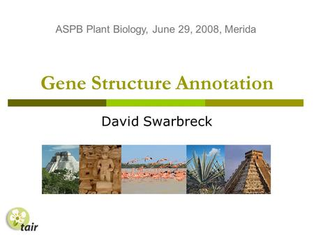 Gene Structure Annotation David Swarbreck ASPB Plant Biology, June 29, 2008, Merida.