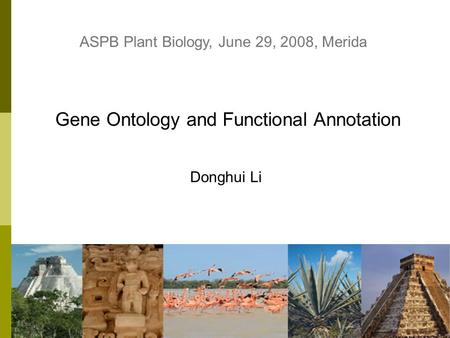 1 Gene Ontology and Functional Annotation Donghui Li ASPB Plant Biology, June 29, 2008, Merida.