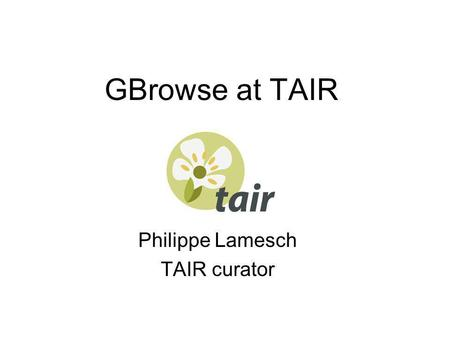 GBrowse at TAIR Philippe Lamesch TAIR curator. Seqviewer.