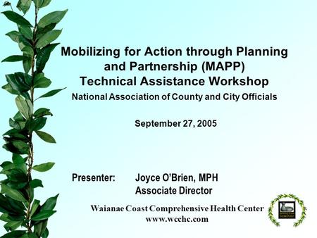 Mobilizing for Action through Planning and Partnership (MAPP) Technical Assistance Workshop National Association of County and City Officials Presenter:Joyce.