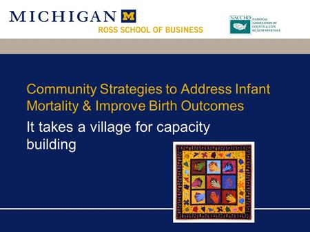 Community Strategies to Address Infant Mortality & Improve Birth Outcomes It takes a village for capacity building.