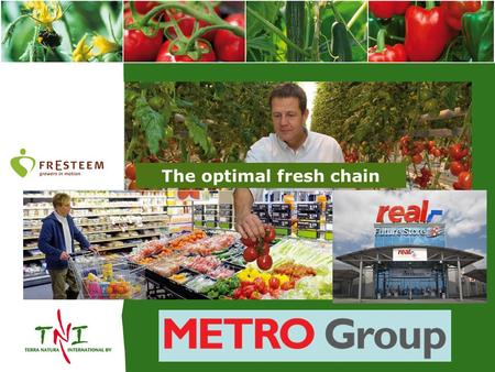 The optimal fresh chain. FrEsteem Cooperative growers association: 16 Growers >300 Hectares Tomatoes 31 Growers>140 Hectares Peppers Packing station>