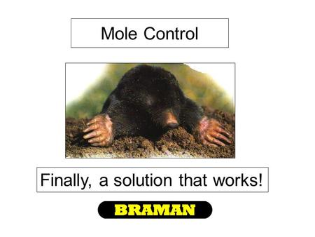 Mole Control Finally, a solution that works!. Many things have been tried in the past… Both homeowners & professionals struggled with finding a solution…