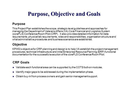 Purpose, Objective and Goals Purpose This Project Plan establishes the scope, strategic-level guidelines and approaches for managing the Department of.