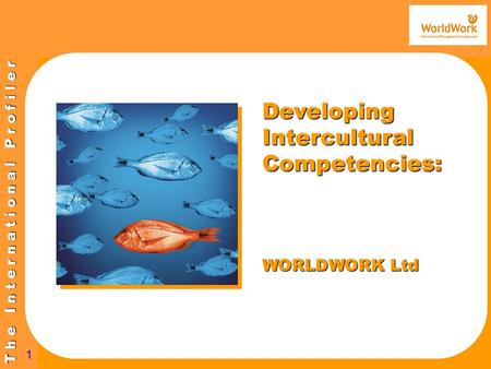 T h e I n t e r n a t i o n a l P r o f i l e r 1 Developing Intercultural Competencies: WORLDWORK Ltd.